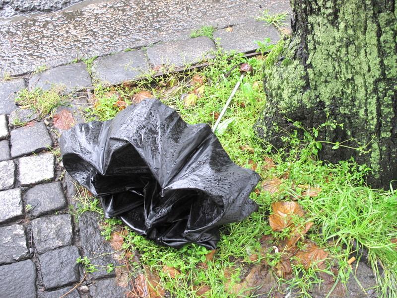 Живописный вариант.  Зонты - это основной мусор на местных улицах.